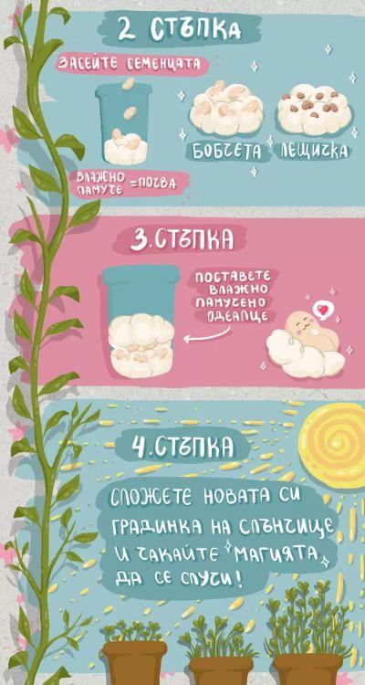 За родителите - Изображение 8