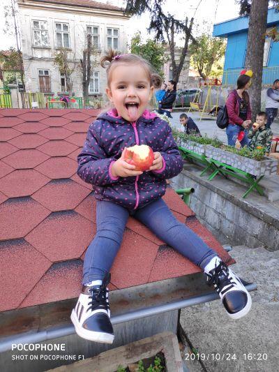 Ябълкова фиеста 1